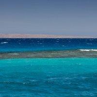 Такое синее красное море :) :: Евгений Пятов