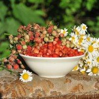 Вкусное лето :: Марина Напылова