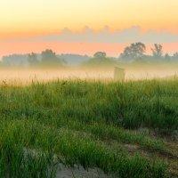 Утренний туман :: Павел Дриневский