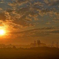 Утро туманное, утро седое... :: Елена Третьякова