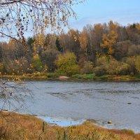 Вид на реку с усадьбы художника Репина. :: Анатолий Клепешнёв