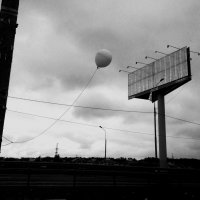 Свобода на привязи :: Светлана Шмелева