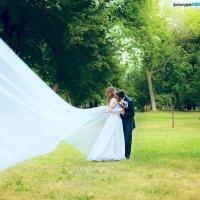 Ах, свадьба! :: марина алексеева