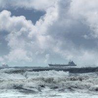 После тайфуна :: Наталья Zima