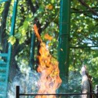 Огонь :: Vorel Moldovanu