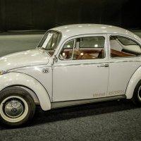 Старый добрый жук :: Михаил Тищенко