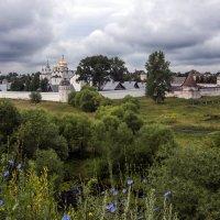 Суздаль, Покровский монастырь :: Виталий Авакян