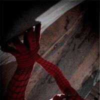 Spider-man :: Антон Кравцов