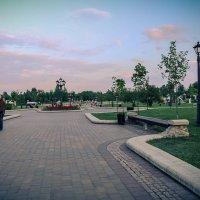 Главная аллея Лошицкого парка. :: Nonna