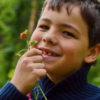 Вкусная ягодка земляничка :: OLCEN Лен