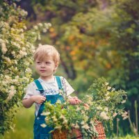 Во саду ли... :: Екатерина Савёлова