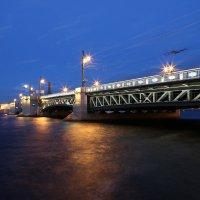 Дворцовый мост :: Larisa Ulanova