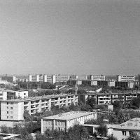 с высоты 8-ого этажа :: aleksandr Крылов