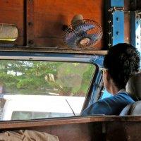 Автобус с опциями (деревянный) :: Наталья Нарсеева