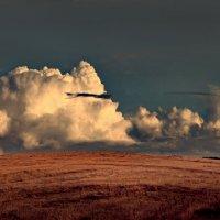 Облако над полем :: Валерий Талашов