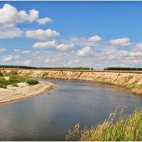 На берегу очень славной реки. :: Владимир Горбунов