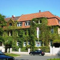 Зеленый дом Оснабрюк :: Лариса Рогова