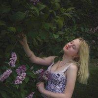 В саду :: Сергей Винтовкин