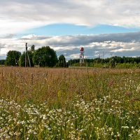 Русское поле :: Тамара Цилиакус