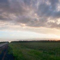 Дорога домой :: Сергей Cash