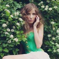 цветы :: Светлана Новикова