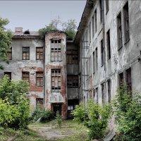 Старый дом :: Виктор (victor-afinsky)