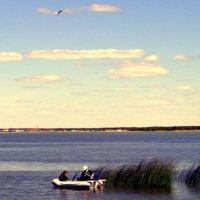 на озере :: Олег Петрушов
