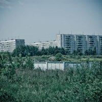 Мой Новосибирск родной :: Света Кондрашова