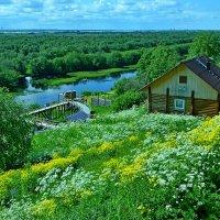 одно из самых живописных мест в окрестностях Архангельска. :: Елена Третьякова
