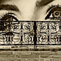 глаза столицы :: Lisa ...