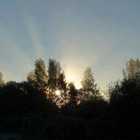 Доброго Вам утра и хорошего денёчка. :: Владимир Гилясев