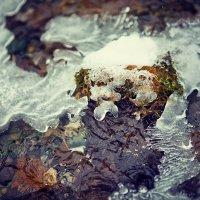 Вода зимой :: Алексей Тарабрин