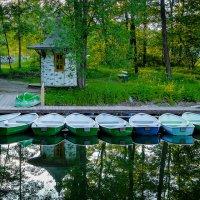 В парке Павловска. :: Андрей Якимюк