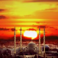 Сердце Чечни :: Сахаб Шамилов