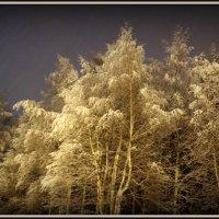 и снег, и дождь.... :: Катерина ч