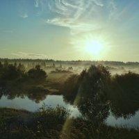 Река Соминка. :: Екатерина Артамонова
