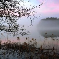 Нежные краски заката. :: Екатерина Артамонова