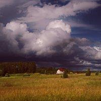 Июня небо грозовое..... :: Елена Kазак