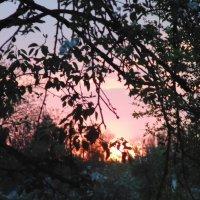 закат... :: Просто witamin