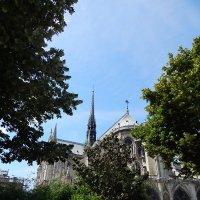 Париж :: Екатерина Харитонова