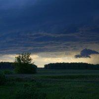 Перед грозой :: Алексей Масалов