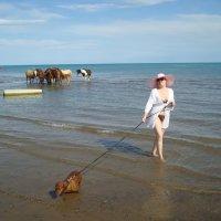 Дама с собачкой. :: Вера Кот-Оглы