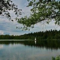 Вот оно какое, это северное лето... :: lekome