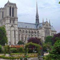Notre Dame de Paris :: Галина