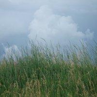 волшебные облака :: Ольга Винокурова
