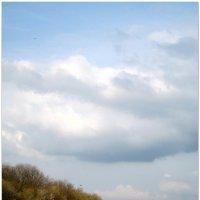 Облака над полем... :: Тамара (st.tamara)