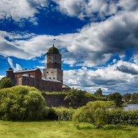 Выборгский замок :: Сергей Базылев