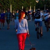 прогулка по набережной - себя показать , других посмотреть :: Арсений Корицкий