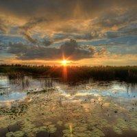 Вечер на заливе :: Сергей Григорьев