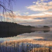 Туманы Финляндии :: Ольга Волкова